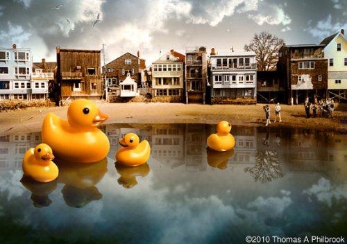 philbrook duckies
