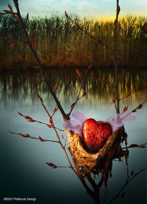 philbrook heart in nest